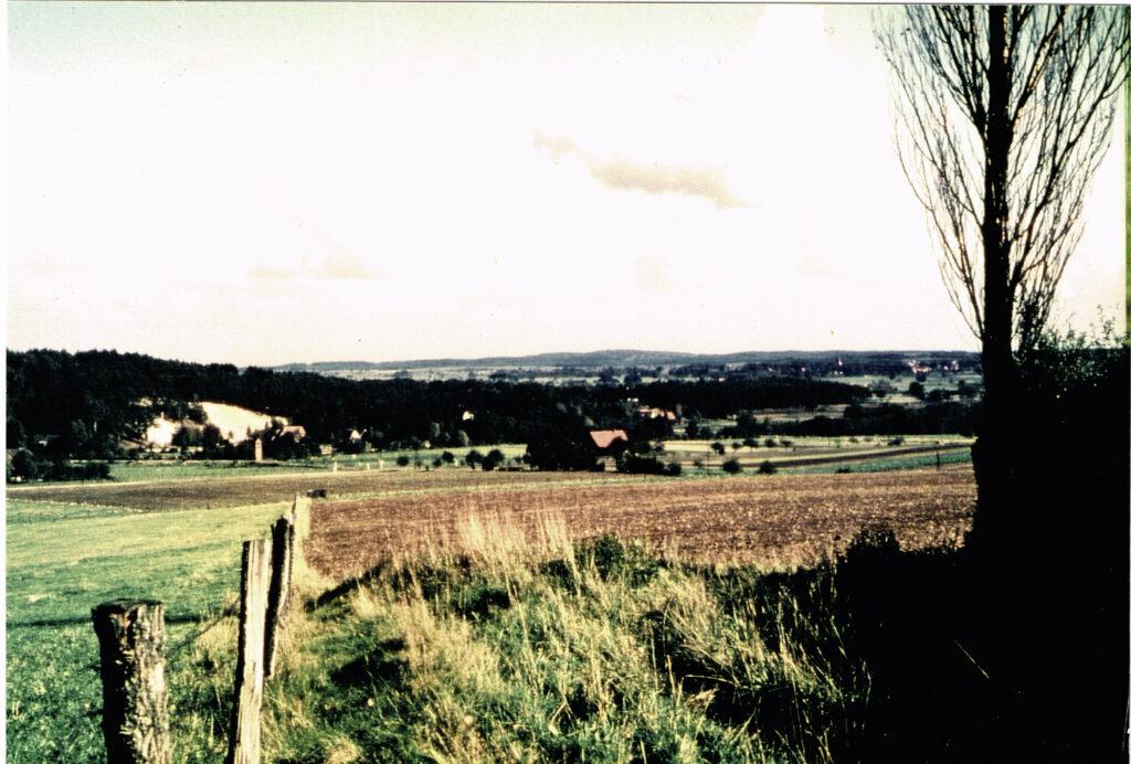 Blick ins Tal– Richtung Sanddüne, 1956